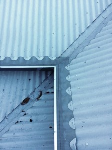 4b - GumLeaf Stainless Steel on a Corrugated Roof - AFTER