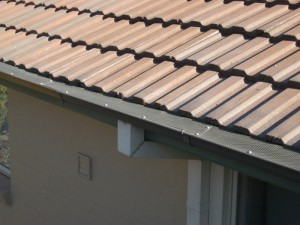 Tile Roof with Gumleaf Protection
