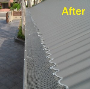 Colorbond on a Corrugated Roof - After
