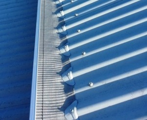 GumLeaf Stainless Steel on a Tiled Roof