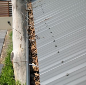 1a - GumLeaf Colorbond on a Corrugated Roof - BEFORE